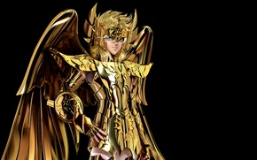Picture cygnus, hyoga, gold saint