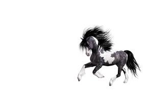 Picture horse, art, running