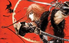 Picture vampire, bats, whip, sword, blood moon, Castlevania, Simon Belmont, Ayami Kojima art