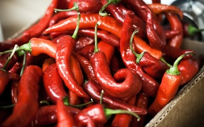 Picture red, food, pepper, Chile