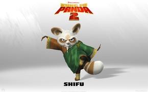 Picture fox, weapon, kung Fu, Kung fu Panda, shifu, kung Fu Panda 2