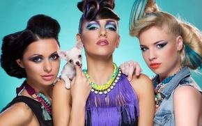 Wallpaper dog, Girls, makeup, hairstyles