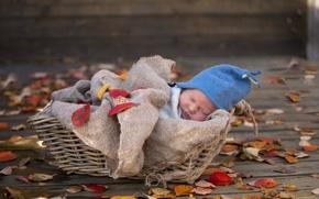 Picture basket, child, sleep, newborn