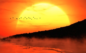 Picture the sun, sunset, birds, fog, shore, silhouettes