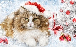 Picture cat, cat, rendering, holiday, toys, new year, decoration