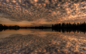 Wallpaper trees, lake, the sky, reflection, clouds