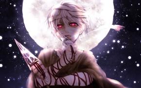 Picture the sky, the moon, Guy, daggers, bandages, Kunai, Magi, Magi - Labyrinth of Magic, Jafar, …