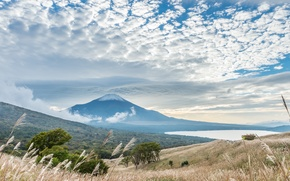 Picture the sky, trees, landscape, mountain, Japan, Fuji