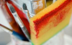 Picture color, sponge, Paintbrush