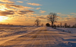 Picture cold, winter, road, snow, trees, frost, drifting snow