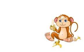 Picture art, banana, monkey, children's