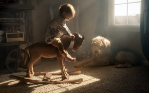 Picture comfort, house, horse, dog, child