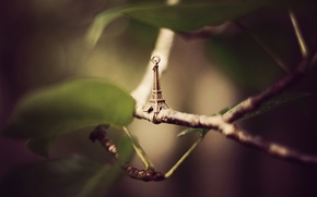 Picture leaves, branches, Eiffel tower, suspension, figure