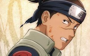 Picture look, scar, vest, ninja, sensei, Naruto Shippuden, Konoha, Naruto shippuuden, Umino Iruka, bandage on forehead, …