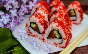 Picture Japan, food, lilac, sushi, rolls