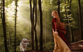 Picture wolf, girl, forest, the situation