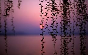Picture sunset, lake, China