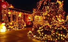 Wallpaper decoration, tree, new year, night, garland