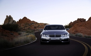 Picture BMW, sedan, gray, 4series
