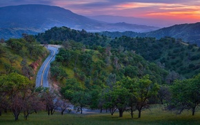 Picture mountains, nature, road, trees, forest, sunset