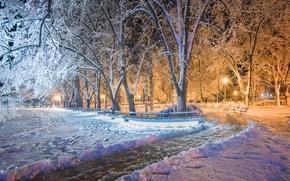 Picture winter, Park, Bulgaria, Win