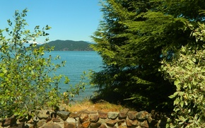Picture summer, trees, mountains, lake, stones, summer, Landscape, trees, landscape, nature, mountain, lake