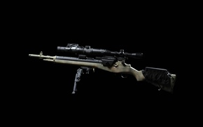 Picture weapons, background, optics, rifle, M1A, fry, semi-automatic, thermal CNVD