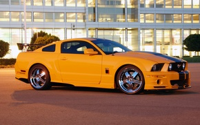 Picture Mustang, Ford, Shelby, 2008, Mustang, Ford, Shelby, roush stage 3