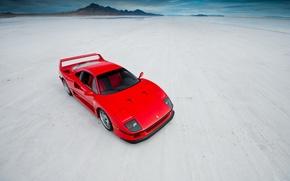 Picture supercar, Ferrari, ferrari f40