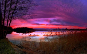 Picture sunset, nature, lake, the evening