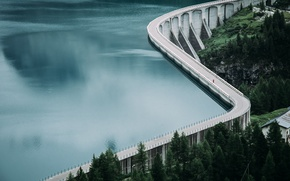 Picture forest, water, lake, dam, reservoir