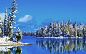 Picture winter, the sky, snow, trees, landscape, lake