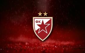 Picture football club, Belgrade, Red Star, Serbian