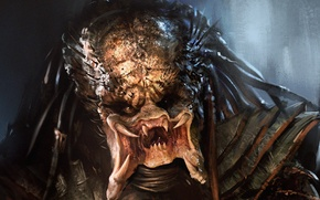 Picture face, predator, art, fangs, alien, Predator