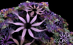Picture color, abstraction, black background, flowers