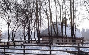 Picture snow, trees, Mill, day, Museum, Sunny, Ukraine, Kiev, hut, Pies