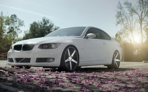 Picture Auto, Trees, BMW, Garden, Tuning, Machine, Petals, Drives