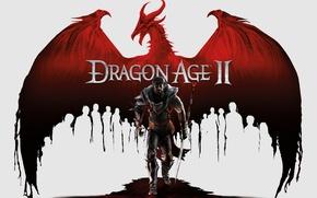 Wallpaper Dragon Age, warrior, dragon
