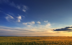 Wallpaper the sky, Field, clouds, 158