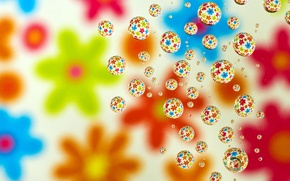 Picture flower, drops, abstraction