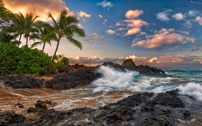 Picture clouds, stones, palm trees, the ocean, rocks, surf, Hawaii, hawaii, quiet, Maui, tropics., maui