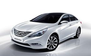 Picture i45, Sonata, 2009, Sonata, white, Hyundai, Hyundai
