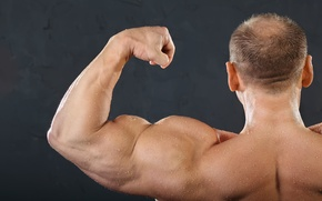 Picture muscles, men, arms