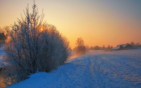 Picture river, trees, winter, snow, morning, fog, houses, sunrise, village, freeze, countryside, mist, frost
