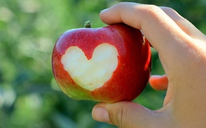Picture heart, Apple, hand