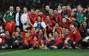 Picture spain, torres, world cup 2010