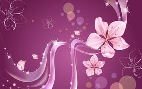 Picture line, circles, flowers, color