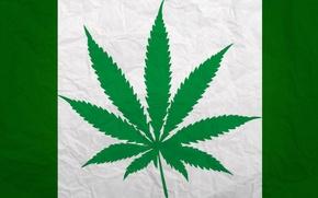Picture Marijuana, greenpeace, Hemp