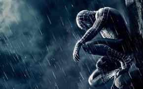 Wallpaper loneliness, the film, spider-man, Spiderman, spider-man