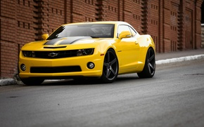 Picture Road, Yellow, Chevrolet, Strip, Wheel, Muscle, Light, Camaro, Lights, Car, Front, Before, Yellow, View, Road, …